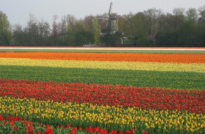 Cenário na janela de Amsterdã para Bruxelas
