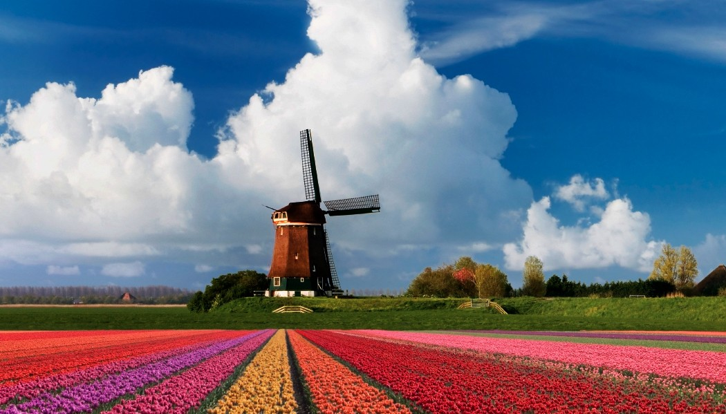 Amsterdã para Bruxelas