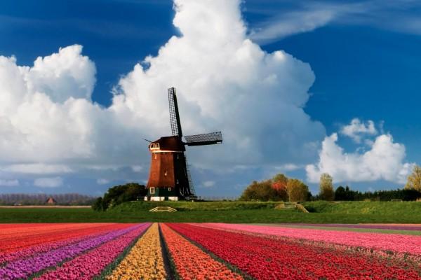 Trem de Amsterdam para Bruxelas