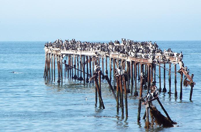 Antigo pier