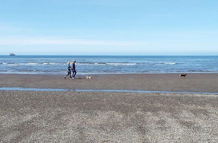 Praia de pedras