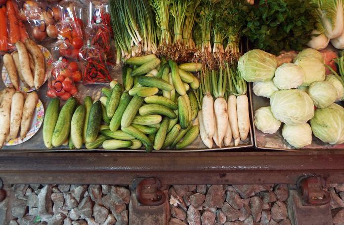 Os vegetais são lindos