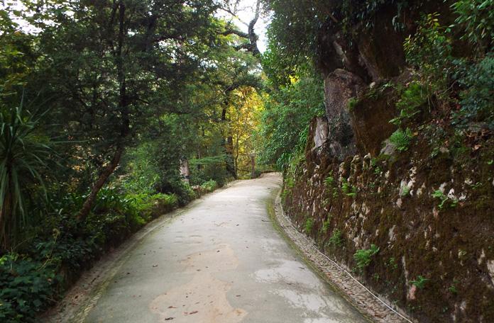 Um dos muitos caminhos