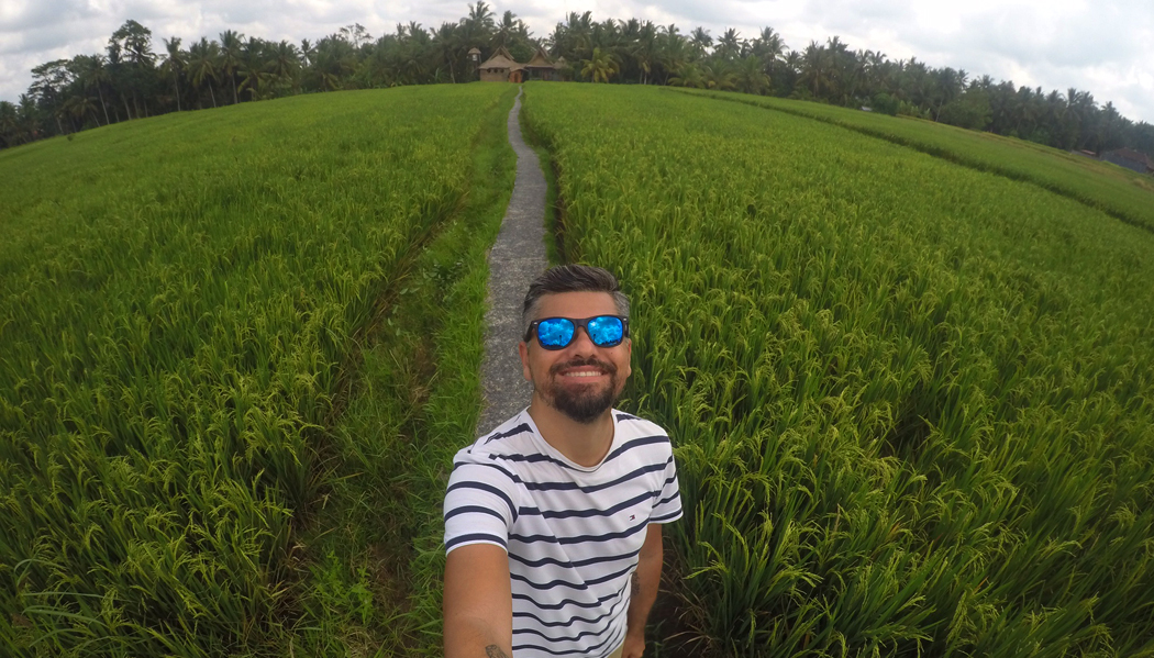 Campos de arroz de Ubud