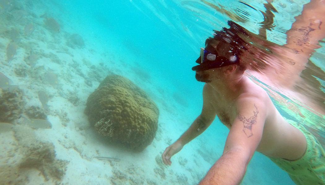 Perfeito para snorkel