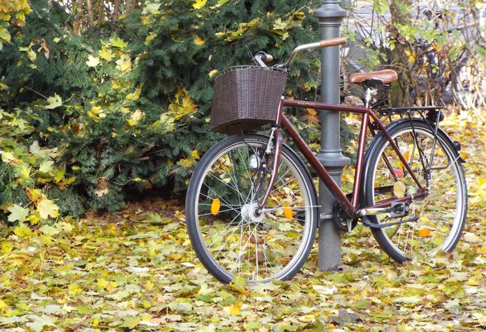 Alugar uma bike é uma ótima opção para andar pela cidade. Eu aluguei essa aí.