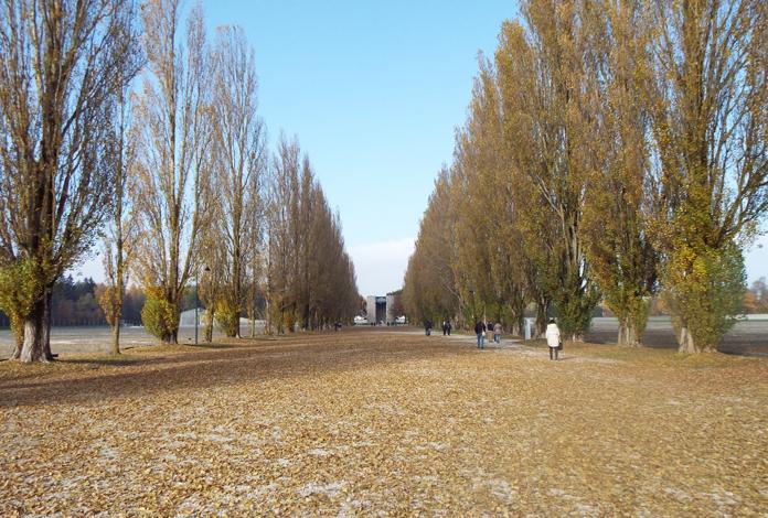 Camp Road
