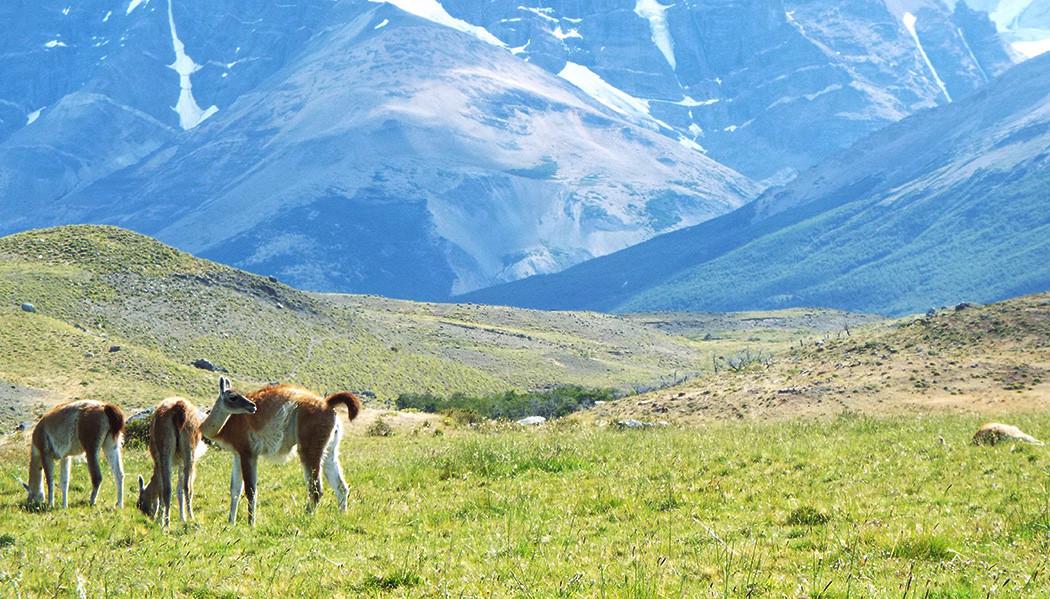 Quanto custa viajar para a Torres del Paine