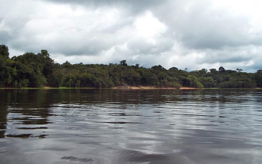 Braço do Rio Negro
