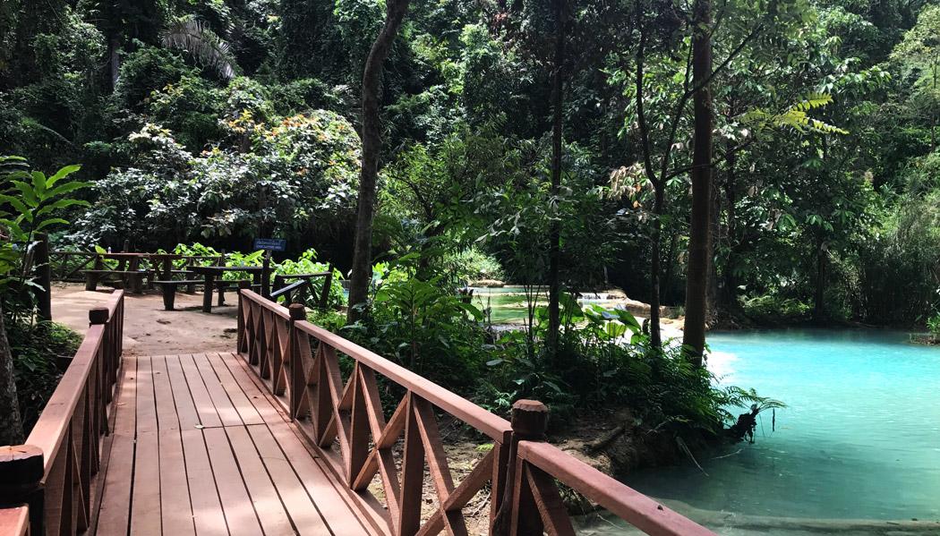 O parque tem várias passarelas para facilitar o acesso