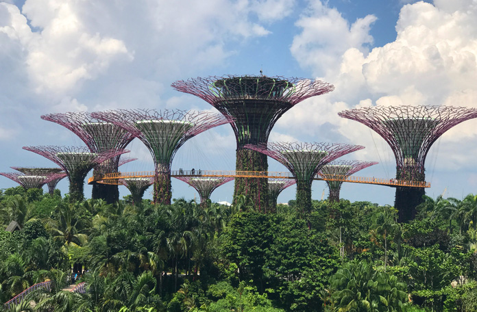 Gardens by the bay e as super árvores