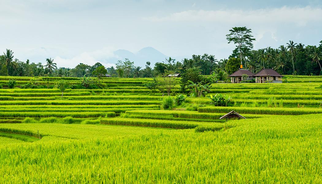 visto para a Indonésia