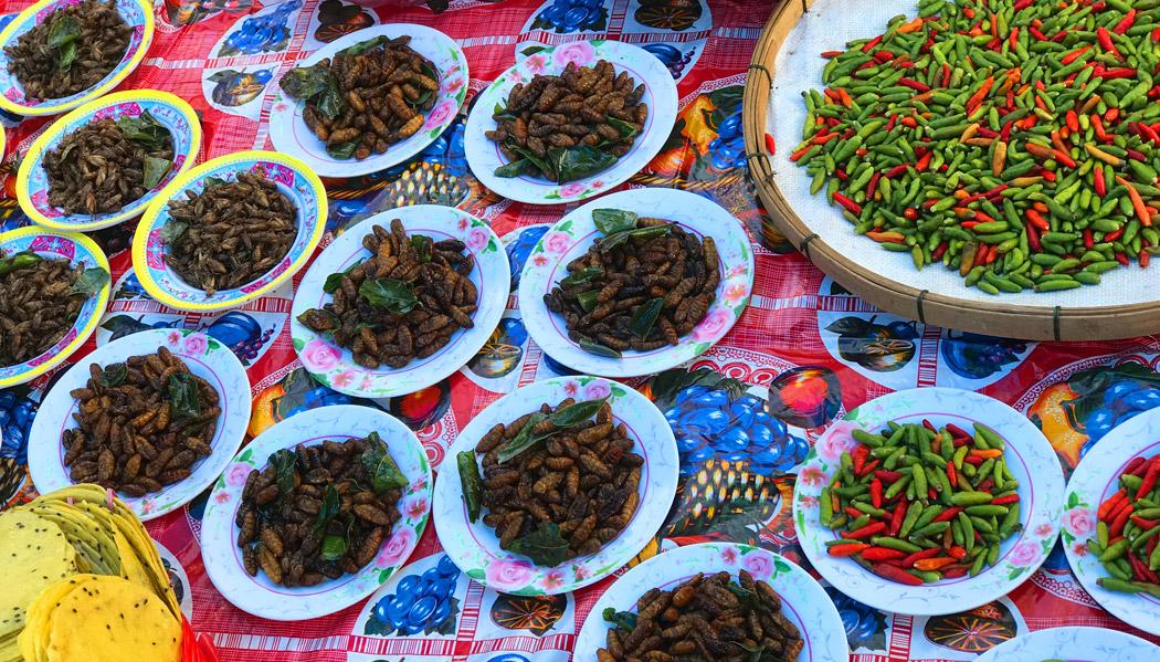 Larvas e pimenta